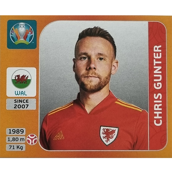 Panini EURO 2020 Sticker Nr 102 Chris Gunter