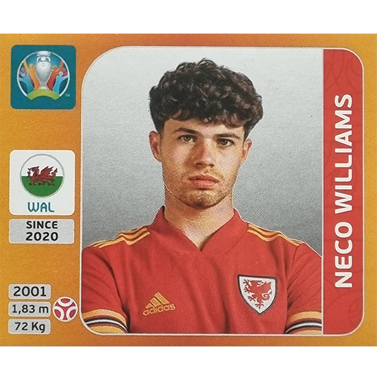 Panini EURO 2020 Sticker Nr 107 Neco Williams