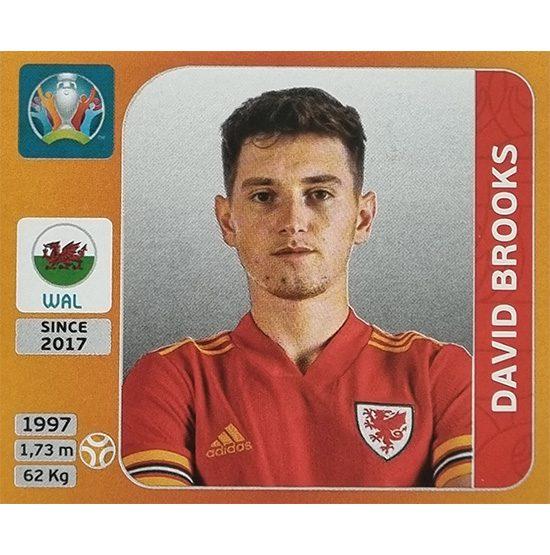 Panini EURO 2020 Sticker Nr 110 David Brooks