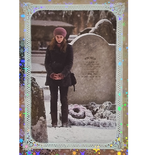 Panini Harry Potter Evolution Trading Cards Nr 291 Magical Place