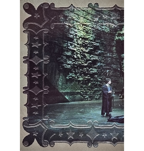 Panini Harry Potter Evolution Trading Cards Nr 292 Magical Place
