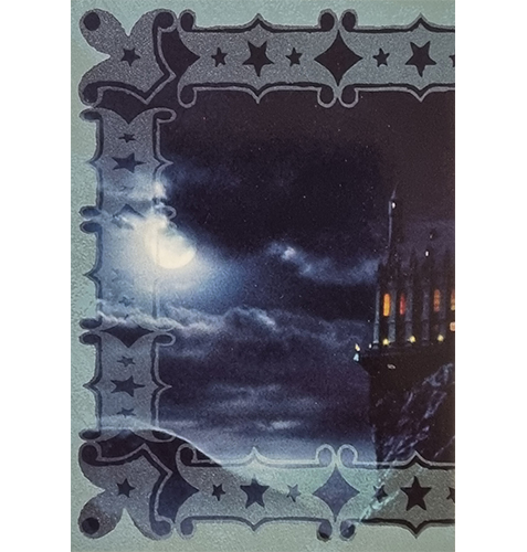 Panini Harry Potter Evolution Trading Cards Nr 298 Magical Place
