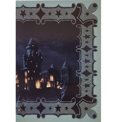 Panini Harry Potter Evolution Trading Cards Nr 300 Magical Place